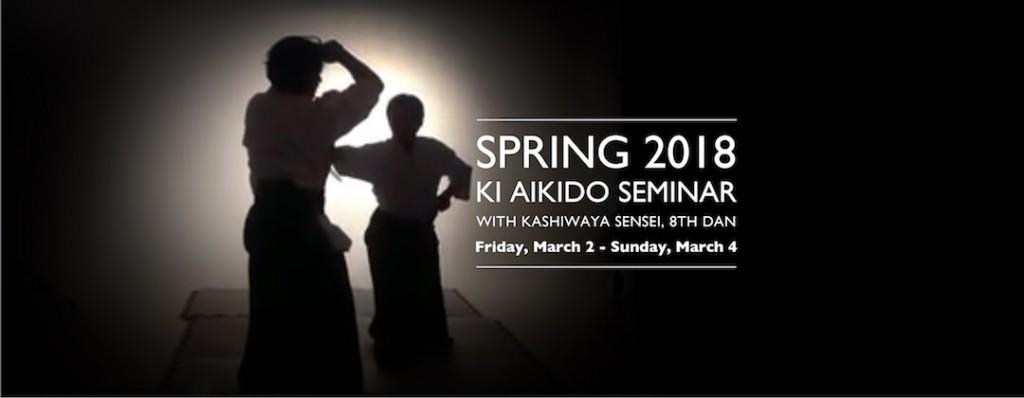 Kashiwaya Spring 2018 Seminar slide